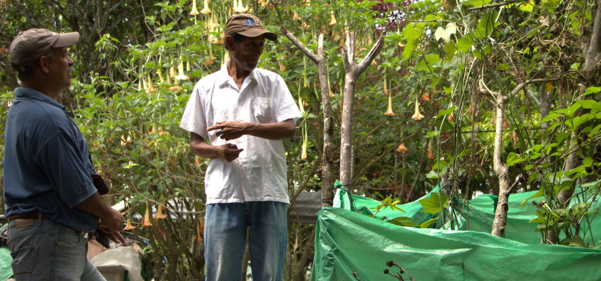 Presentación de Protocolo y Sistematización de Conocimiento Tradicional Ecológico Ch'orti'